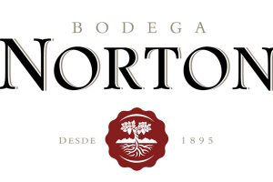 bodega-norton-logo
